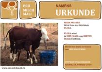 Namensurkunde einer gekauften Kuh in Mali.